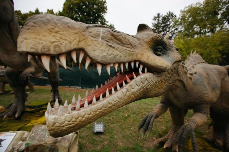 """Виставка """"Живі динозаври"""""""